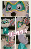 PAW PATROL play by play EVEREST SUPER HEROINE