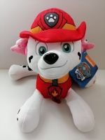 PAW PATROL play by play Marcus